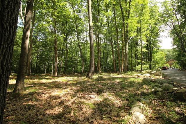 51 Oakdale Rd, North Reading, MA 01864 (MLS #72849260) :: Re/Max Patriot Realty