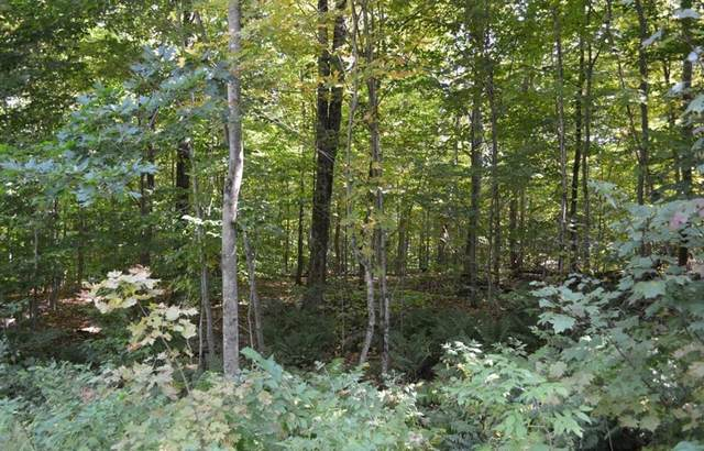 Lot 67 Moberg Road, Becket, MA 01223 (MLS #72850820) :: Conway Cityside