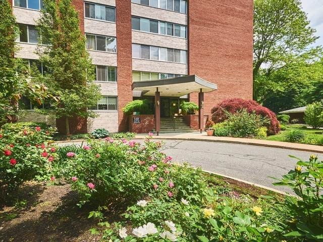 22 Chestnut Place #315, Brookline, MA 02445 (MLS #72851595) :: Boston Area Home Click
