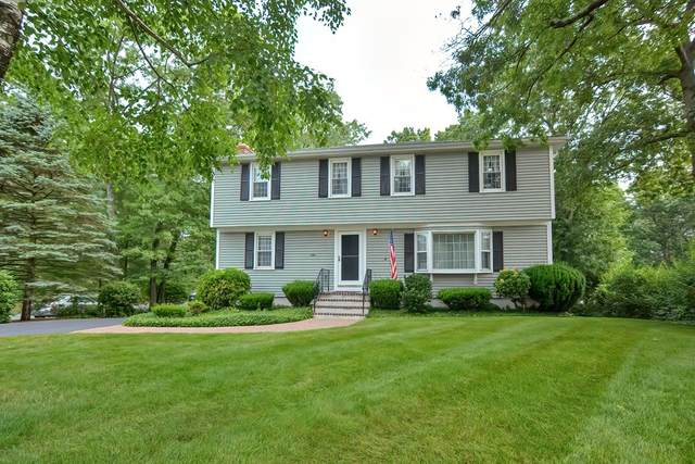 215 Lowe Ave, Stoughton, MA 02072 (MLS #72854516) :: Charlesgate Realty Group