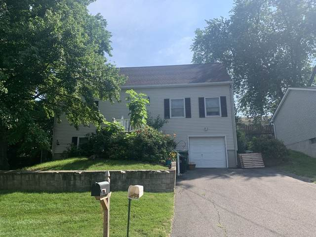 66 Laclede Avenue, Chicopee, MA 01020 (MLS #72855554) :: Parrott Realty Group