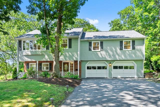 16 Hodge Road, Arlington, MA 02474 (MLS #72855615) :: Charlesgate Realty Group