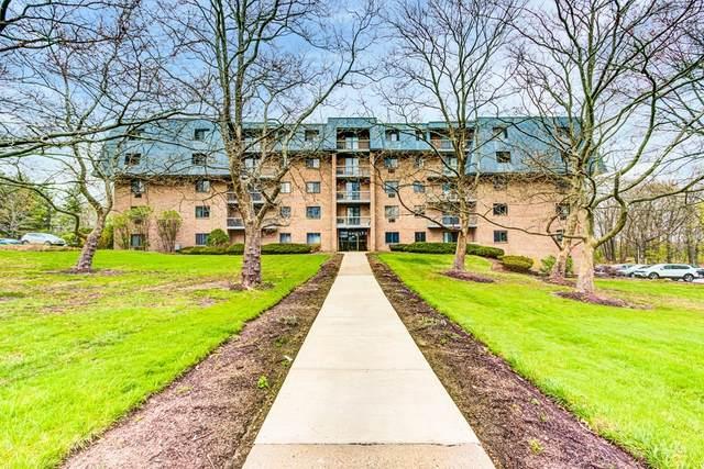65 Commons Dr #603, Shrewsbury, MA 01545 (MLS #72861099) :: The Duffy Home Selling Team