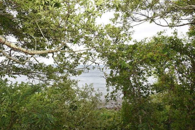 33 Seaview Drive, Plymouth, MA 02360 (MLS #72868414) :: Kinlin Grover Real Estate