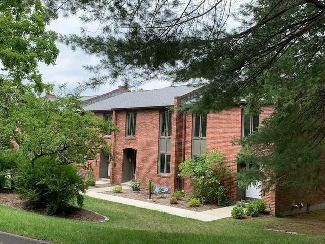 5 Bedford Ct #5, Amherst, MA 01002 (MLS #72868692) :: Westcott Properties
