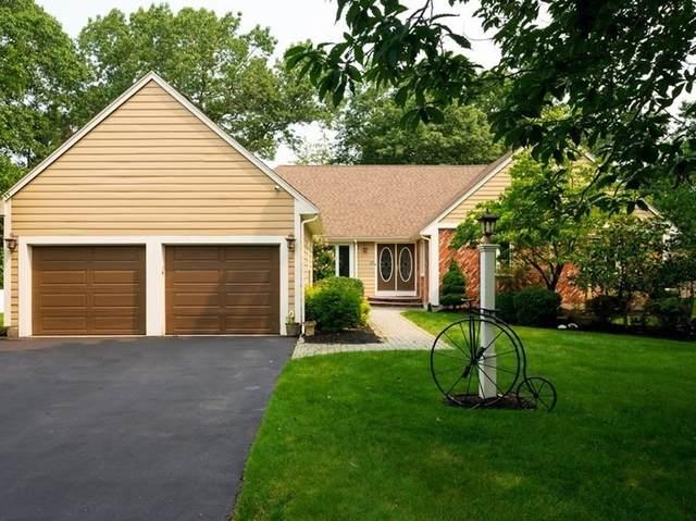10 Canavan Dr, Braintree, MA 02184 (MLS #72869661) :: Spectrum Real Estate Consultants