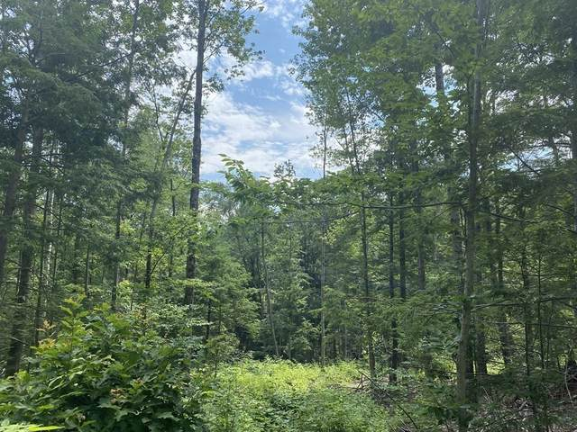 Lot 1 Howes Rd, Buckland, MA 01338 (MLS #72870524) :: Kinlin Grover Real Estate