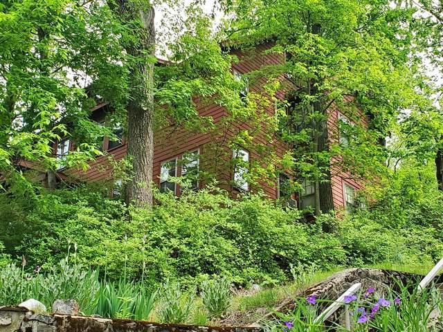 37 Westminster Avenue, Arlington, MA 02474 (MLS #72871644) :: Home And Key Real Estate