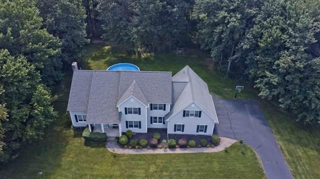 41 Salvatore Drive, Westfield, MA 01085 (MLS #72872780) :: Welchman Real Estate Group