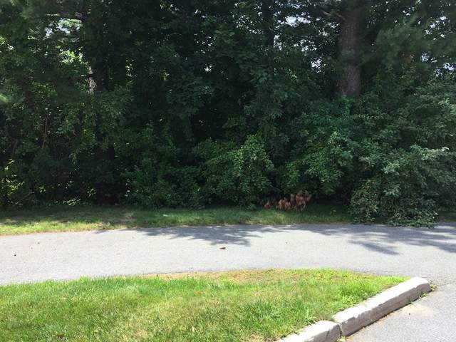 0 High St Ext, Ayer, MA 01432 (MLS #72874181) :: The Seyboth Team