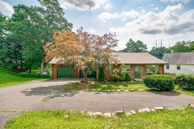 290 Morton Street, West Springfield, MA 01089 (MLS #72874443) :: Welchman Real Estate Group