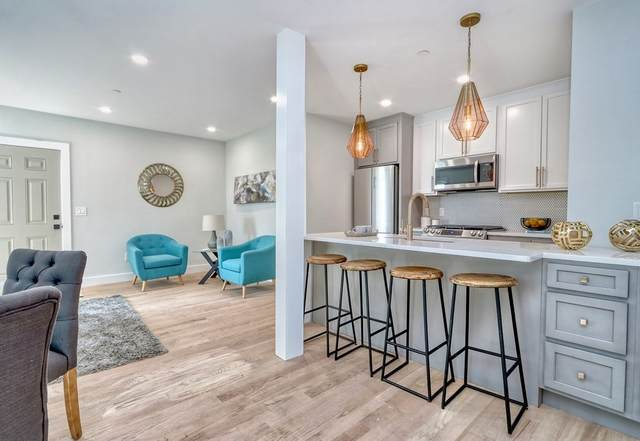27 Alpine #2, Boston, MA 02119 (MLS #72879263) :: Dot Collection at Access