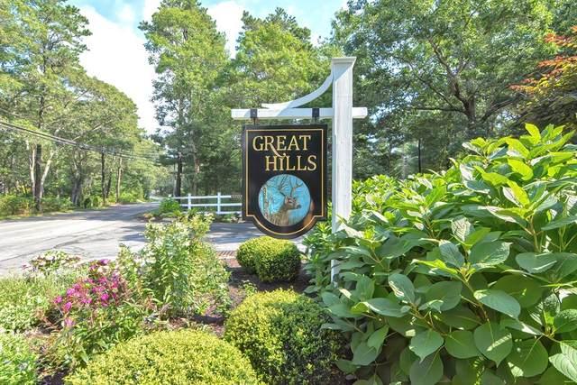 51 Great Hills Drive, Sandwich, MA 02537 (MLS #72893988) :: Welchman Real Estate Group