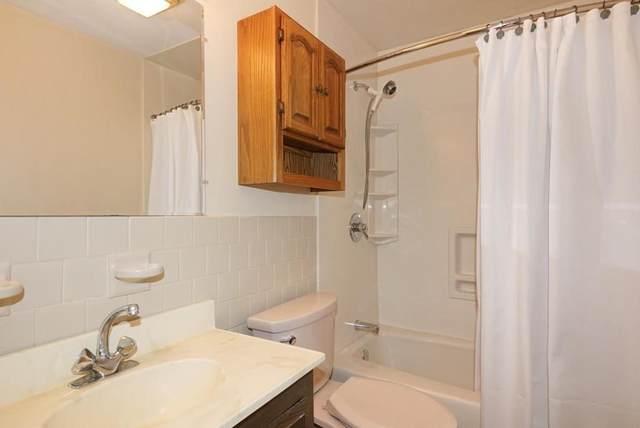 240 Hampshire #1, Cambridge, MA 02139 (MLS #72897181) :: Westcott Properties