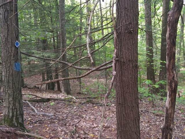 Lot 1 Ferncliff Ave, Northfield, MA 01354 (MLS #72897631) :: The Seyboth Team
