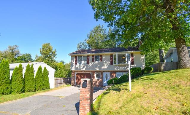 262 Parkerview St, Springfield, MA 01129 (MLS #72899226) :: Trust Realty One