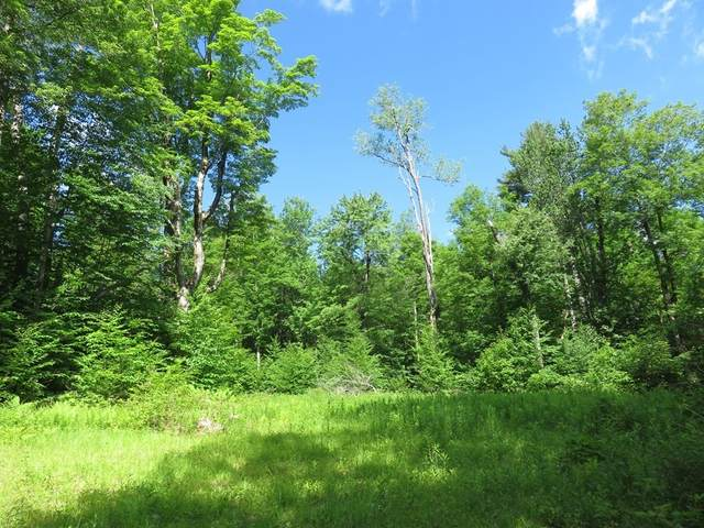 00 Jacob's Ladder Rd, Becket, MA 01223 (MLS #72900725) :: Boylston Realty Group