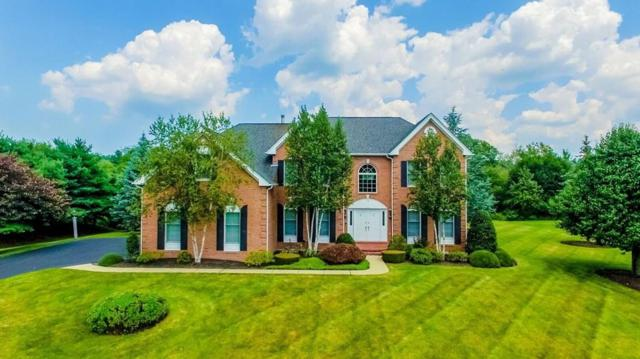 24 Cherokee Road, Canton, MA 02021 (MLS #72228621) :: Goodrich Residential
