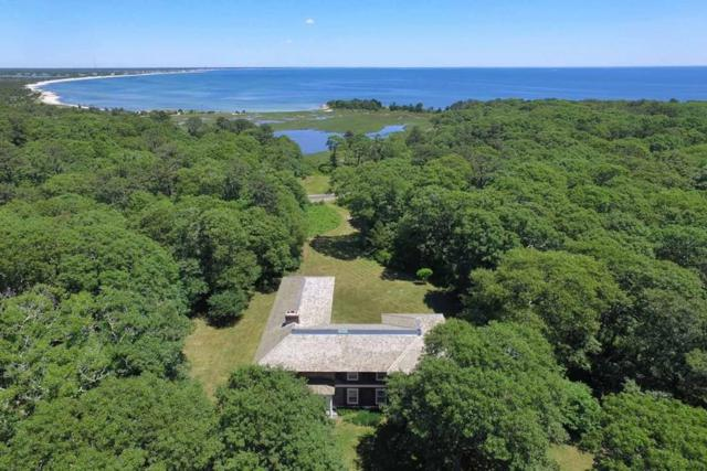 1170 Great Island Rd, Yarmouth, MA 02673 (MLS #72289279) :: Exit Realty