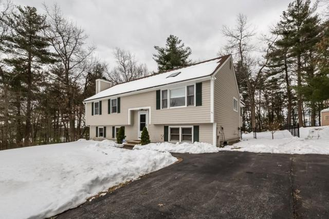 53 Mulberry Circle, Ayer, MA 01432 (MLS #72293087) :: The Home Negotiators