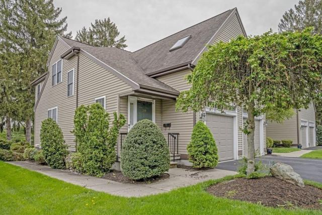 219 Neponset St #219, Canton, MA 02021 (MLS #72329610) :: ALANTE Real Estate
