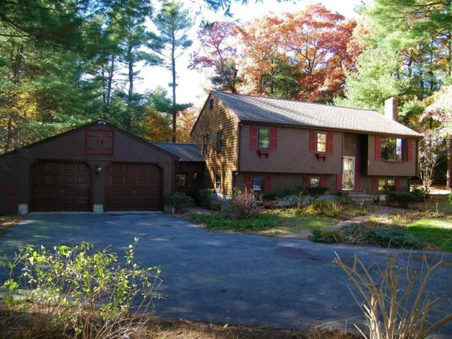 125 Riverview Dr, Bridgewater, MA 02324 (MLS #72421862) :: ALANTE Real Estate