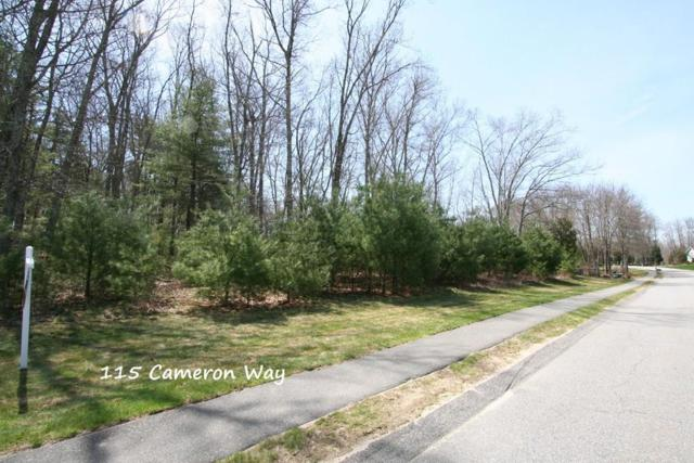 115 Cameron Way, Rehoboth, MA 02769 (MLS #72434423) :: Apple Country Team of Keller Williams Realty