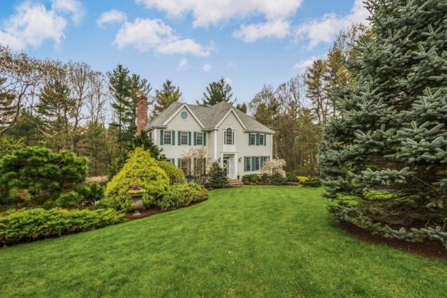36 Falcon Ridge Dr, Hopkinton, MA 01748 (MLS #72466505) :: Kinlin Grover Real Estate