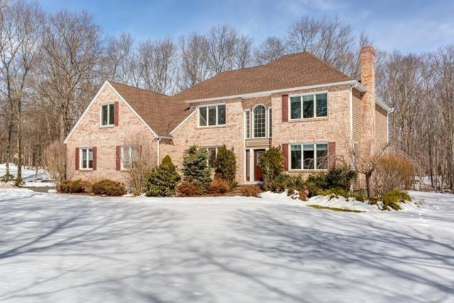 29 Castle Drive, Sharon, MA 02067 (MLS #72467814) :: Primary National Residential Brokerage