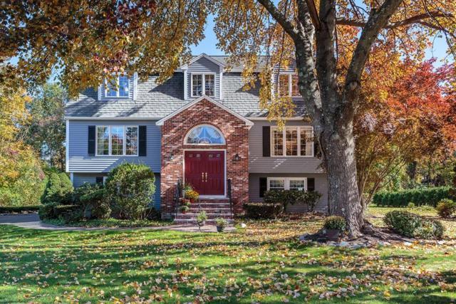 10 Hattie Lane, Billerica, MA 01821 (MLS #72475534) :: Westcott Properties