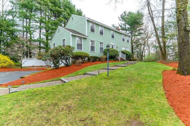 29 Woodhaven Dr, Andover, MA 01810 (MLS #72488236) :: Apple Country Team of Keller Williams Realty