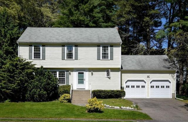 92 Washburn Ave, Wellesley, MA 02481 (MLS #72502381) :: The Russell Realty Group