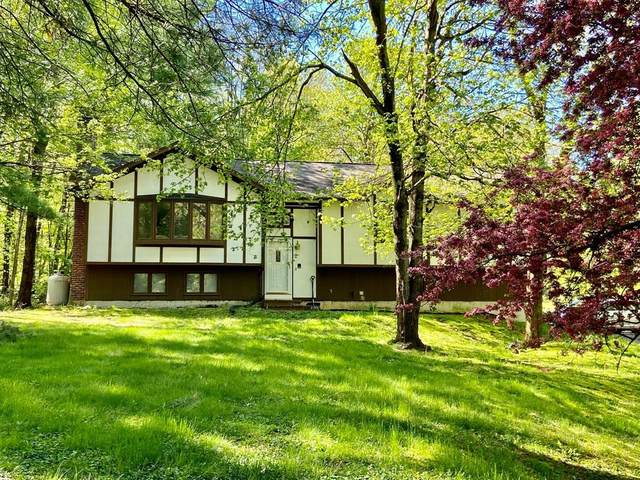 97 Hulst Rd, Amherst, MA 01002 (MLS #72606265) :: Trust Realty One