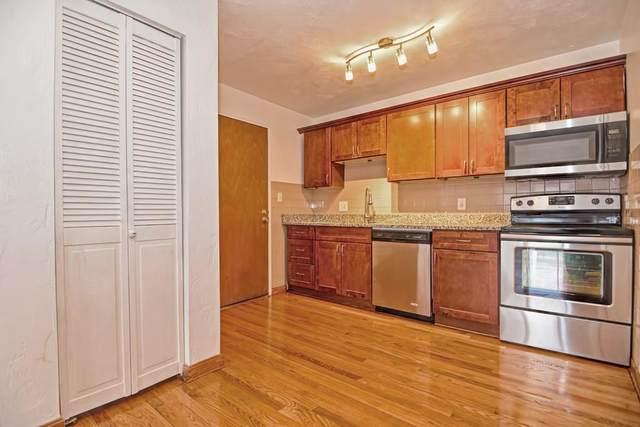 505 Washington Ave #41, Chelsea, MA 02150 (MLS #72725263) :: Exit Realty