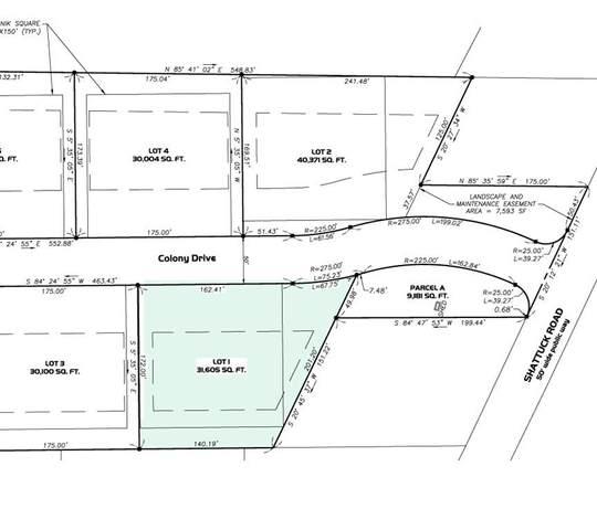 Lot 1 Colony Drive, Hadley, MA 01035 (MLS #72730390) :: The Seyboth Team