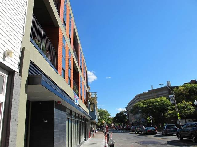 17 Holland St #301, Somerville, MA 02144 (MLS #72743023) :: Alex Parmenidez Group