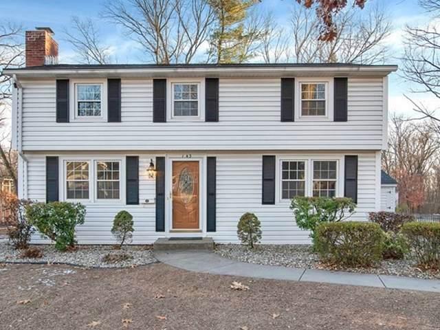 143 Endicott St, Springfield, MA 01118 (MLS #72773359) :: Cosmopolitan Real Estate Inc.