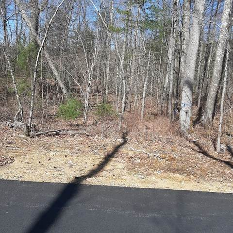 0 East Hill Road, Brimfield, MA 01010 (MLS #72780301) :: The Gillach Group