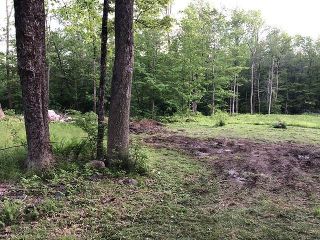492 Skyline Trail, Chester, MA 01011 (MLS #72838702) :: Dot Collection at Access