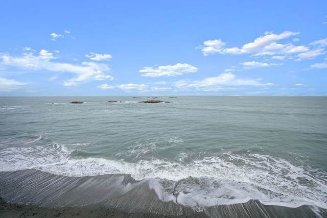 66 Glades Road #7, Scituate, MA 02066 (MLS #72873767) :: Dot Collection at Access