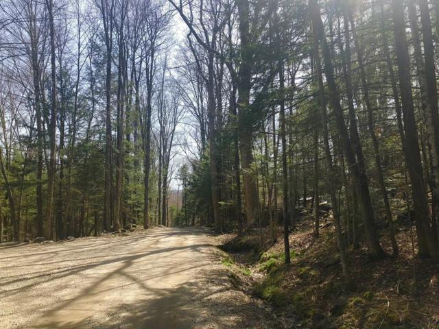 0 Mount Rd, Chesterfield, MA 01026 (MLS #72263129) :: The Duffy Home Selling Team