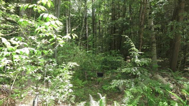 0 Montague Rd. Lot 34, Shutesbury, MA 01072 (MLS #72295343) :: DNA Realty Group