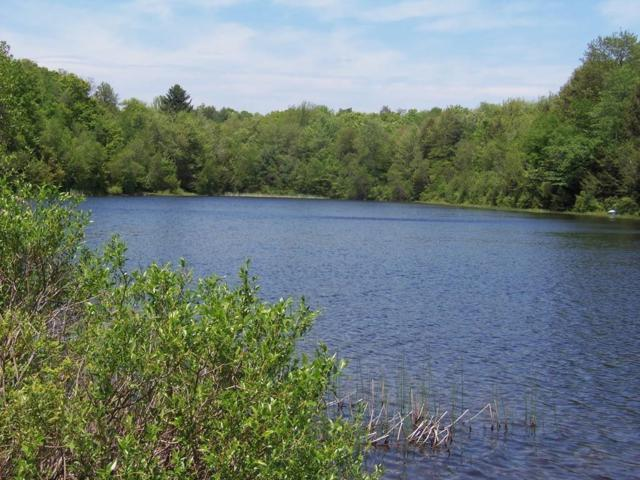 100 W Otter Dr, Tolland, MA 01034 (MLS #72334156) :: Anytime Realty