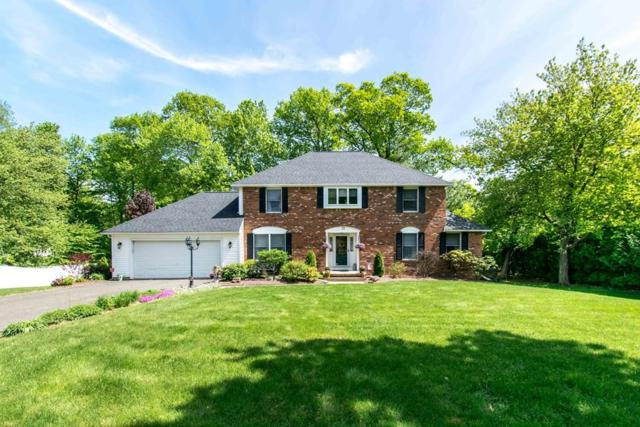 73 Rugby Road, Agawam, MA 01030 (MLS #72445056) :: DNA Realty Group