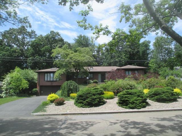 84 Wilkin Drive, Longmeadow, MA 01106 (MLS #72465438) :: Westcott Properties
