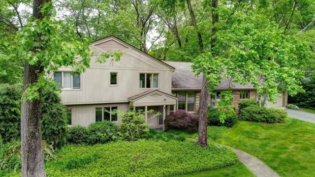 46 Pinewood Dr, Longmeadow, MA 01106 (MLS #72496922) :: Westcott Properties