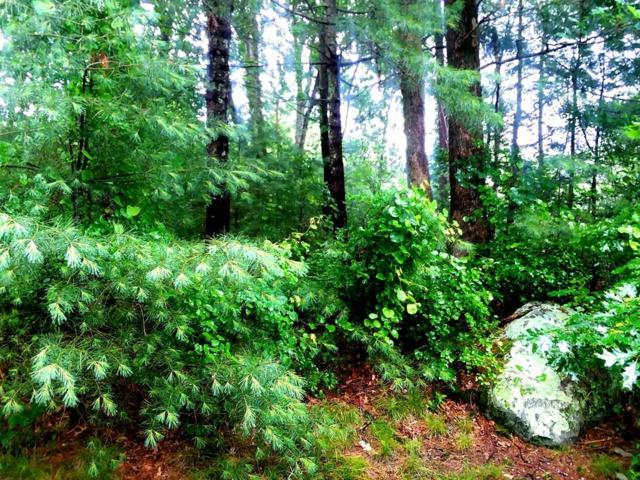 64 Forest Ave. Lot 6, Cohasset, MA 02025 (MLS #72527277) :: Kinlin Grover Real Estate