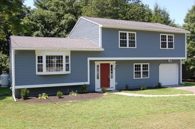 46 Carl Rd, Holliston, MA 01746 (MLS #72538882) :: Westcott Properties