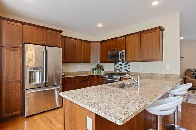 50 Black Horse Place #14, Concord, MA 01742 (MLS #72655310) :: Trust Realty One