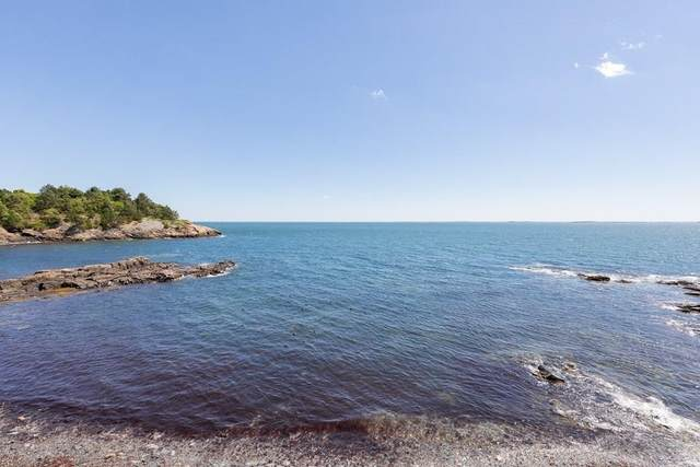151 Bass Point Rd., Nahant, MA 01908 (MLS #72698135) :: Maloney Properties Real Estate Brokerage